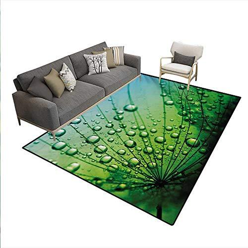 Nantucket Floral Picture Frame - Floor Mat,Floral Theme Macro Photo Dandelion Seeds Water Drops Digital Image Print,3D Printing Area Rug,Fern Green,5'x7'