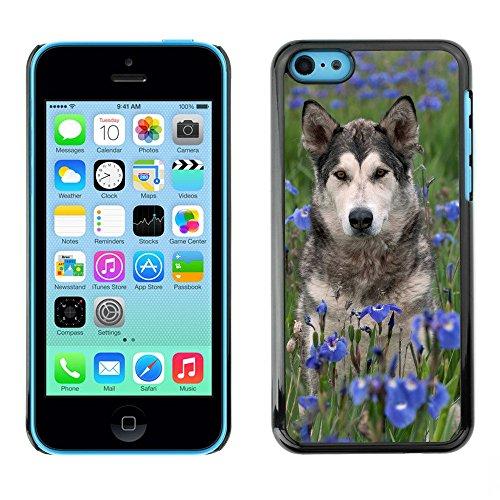 Premio Sottile Slim Cassa Custodia Case Cover Shell // F00003131 Scrabble the Dog // Apple iPhone 5C