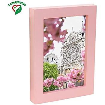 Amazon.com - Lilian Light Pink Desk/Wall Photo Frames (pink 8 x 10in ...