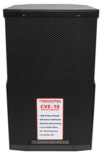 Cerwin Vega CVE-10 10