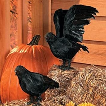 realistic feathered crows set of 2 great halloween prop by unknown - Halloween Crows