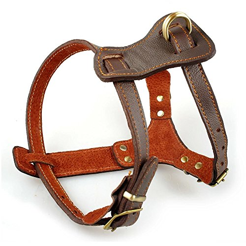 Harness Leather Brown (Beirui Leather Dog Harness - No Escape Training Harness Chest 15.5-18 Small Dogs)