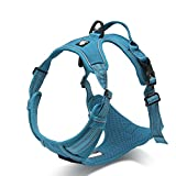 """Pettom Front Range Adjustable No Pull Nylon Cat Dog Harness Outdoor Adventure Pet Vest with 3M Reflective Soft Padded Heavy Duty Handle for Training or Walking (S(Chest size:17""""-22""""), Blue)"""