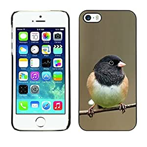 Ziland / Slim Design Case Cover Shel / Branch Spring Winter Nature / Apple iphone 4 4s