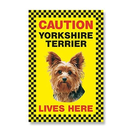 Caution Yorkshire Terrier lives here beware of dog sign yellow priplak plastic Yorkie