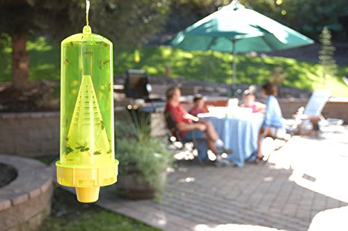 RESCUE! Non-Toxic Reusable Trap Yellowjackets by RESCUE! (Image #3)'