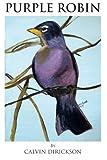 Purple Robin, Calvin Dirickson, 1466956259