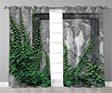 Satin Grommet Window Curtains,Mystic House Decor,Ivy on Wall with Aged Antique Empty Picture Frame as Window Creative Art,Green Charcoal,2 Panel Set Window Drapes,for Living Room Bedroom Kitchen Cafe