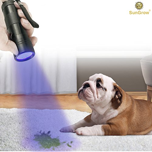 sungrow pet urine detector torch uv flashlight for dog urine cat stains bed bug 12 led. Black Bedroom Furniture Sets. Home Design Ideas