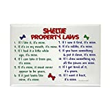 CafePress - Sheltie Property Laws 2 Rectangle Magnet - Rectangle Magnet, 2