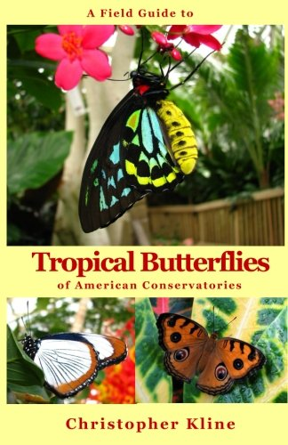 Download A Field Guide to Tropical Butterflies of American Conservatories PDF