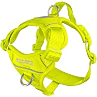 RC Pet Products Momentum Control Dog Harness, Breathable Air Mesh Harness, Small, Tennis