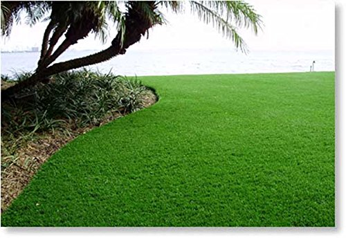 New 15' Foot Roll Artificial Grass Pet Turf Synthetic SALE! Many Sizes! (88 oz 15' x 40' = 600 Sq feet) by Artificial Grass Wholesalers (Image #3)