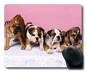 Bulldog Puppies Gaming Mouse Pad - 220*180*3MM Dimension - Non-slip Rubber base - Cloth Top Mousepad/ Mouse Pad by ruishername