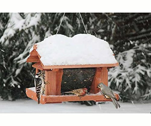 14 inch Seed and Suet Feeder - SET OF 2 by Songbird Essentials