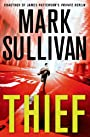 Thief: A Robin Monarch Novel (Robin Monarch series)