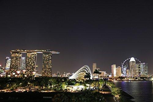Home Comforts Laminated Poster Dark Light Landmark Structure Night Singapore Poster 24X16 Adhesive Decal