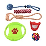 COOLA Fun, Durable Dog Toy Set from Includes Chew Squeaky Toys, Flying Discs for Chasing, Toy Ropes for Pulling. Interactive Toys for Play, Exercise, Training for Small & Medium Dogs (6 Pack) …