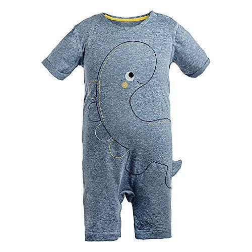 COTTON FAIRY Newborn Baby Boys Embroidered Bodysuits Short Sleeve Dinosaur Rompers One-Piece Blue 6-9M