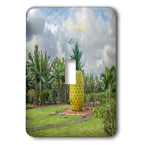 3dRose lens Art by Florene - Pineapple And Beach Art - Image of Pineapple Plantation On Oahu Hawaii - Light Switch Covers - single toggle switch (lsp_303368_1) ()