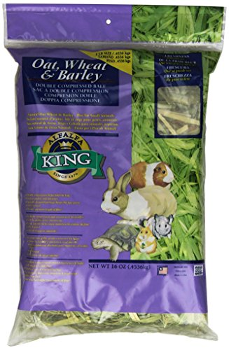 Alfalfa King Double Compressed Oat Wheat and Barley Hay Pet Food, 12 by 9 by (Oat Hay)