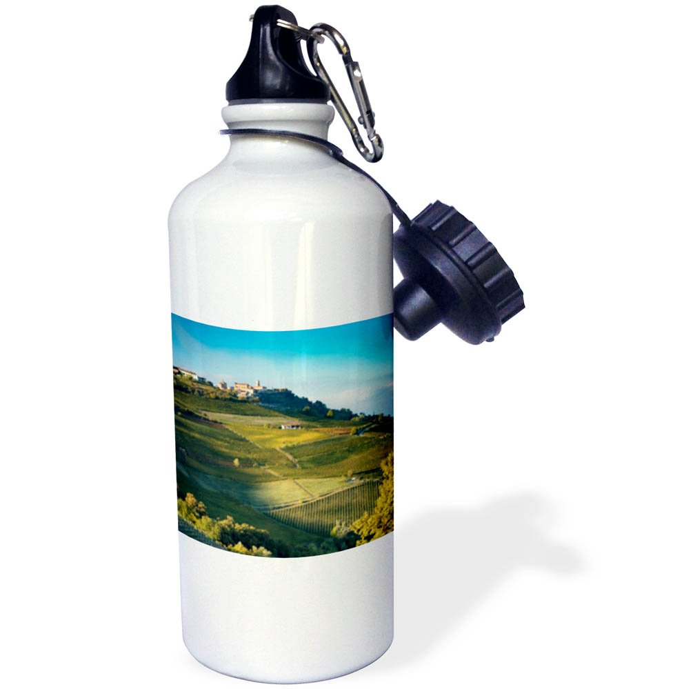 3dRose Danita Delimont - Vineyards - Autumn evening sunlight on the vineyards, La Morra, Piemonte, Italy - 21 oz Sports Water Bottle (wb_277568_1) by 3dRose
