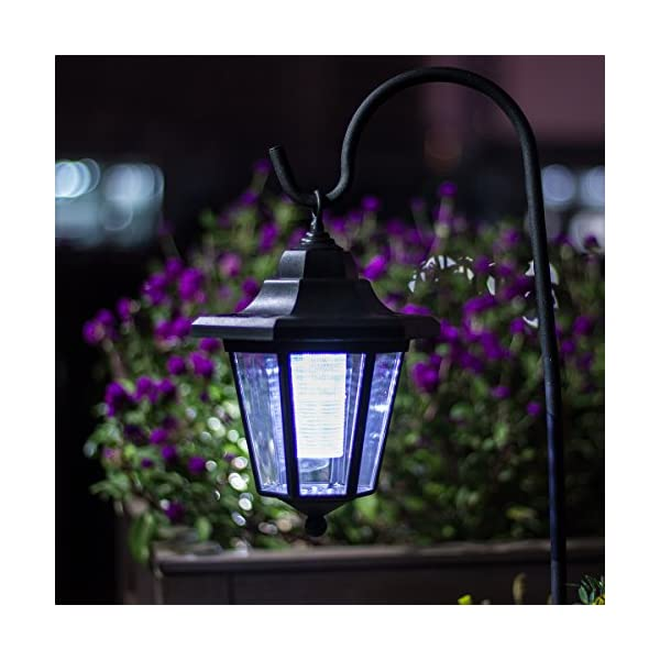 51yxnNsN 4L. SS600  - GIGALUMI Solar Lights Outdoor Garden Led Light Landscape / Pathway Lights Stainless Steel-12 Pack
