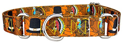 (Country Brook Petz Thanksgiving Tradition Martingale Dog Collar - Small)