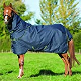Horseware Amigo Pony Bravo 12 Plus 250G Turnout 60