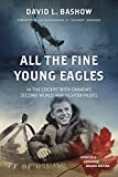 All the Fine Young Eagles: In the Cockpit with