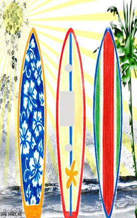 Surfing Switchplate (Surfboard Dreams Decorative Switchplate Cover)