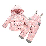 LPATTERN Unisex Baby Toddler Winter Snowsuit Cartoon Ski Snowpants Bib Down Coat Hooded Puffer Jacket 2 Piece Set Outfit, Pink, Age 3-4 Years/Tag 110