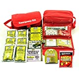 Small Perfect Survival Kit, Earthquake Kit, Commuter Kit for Auto, Home or School