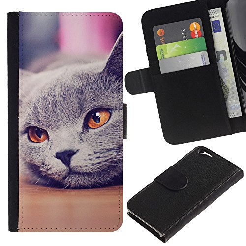 EuroCase - Apple Iphone 6 4.7 - Russian blue British shorthair cat - Cuir PU Coverture Shell Armure Coque Coq Cas Etui Housse Case Cover