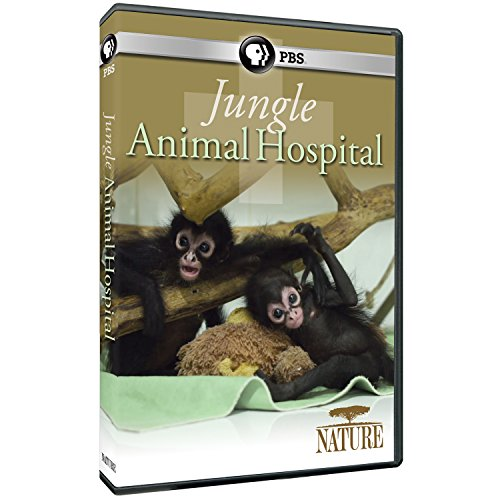 NATURE: Jungle Animal Hospital DVD