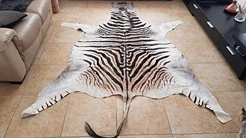 100% Original South African Zebra Hide-Skin Grade A,, used for sale  Delivered anywhere in USA
