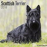 Scottish Terrier Calendar 2018 - Dog Breed Calendar - Premium Wall Calendar 2017-2018