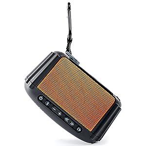 Ecoxgear Bluetooth Portable Audio System (orange)