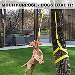 XiaZ Retractable Interactive Dog Toy, Rope Tug of War Toys for Medium or Large Dogs, Outdoor Hanging Exercise Play Tug War, Extra Durable, Safe