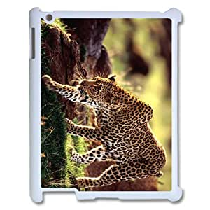 Ipad2,3,4 The plum flower leopard Phone Back Case Use Your Own Photo Art Print Design Hard Shell Protection YT097013