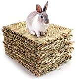 Yesland 12 Pack Woven Bed Mat for Rabbits - Grass