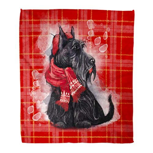 Golee Throw Blanket Black Scottish Terrier Wearing in Red Hat and Scarf Scotish 50x60 Inches Warm Fuzzy Soft Blanket for Bed Sofa