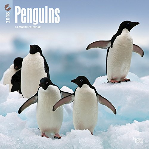Penguins 2018 Monthly Square Wall Calendar