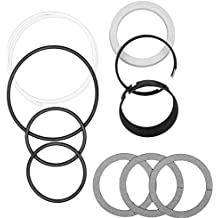 CASE D42874 HYDRAULIC CYLINDER SEAL KIT