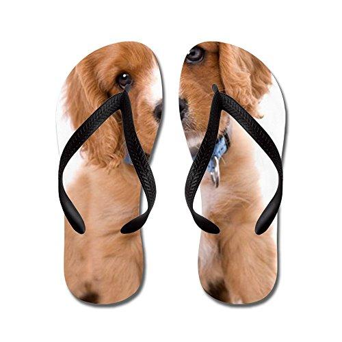 CafePress King Charles Cavalier Six Week Old Pupp - Flip Flops, Funny Thong Sandals, Beach Sandals Black