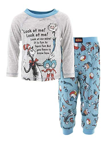 Dr. Seuss The Cat in The Hat Toddler Boys Long Sleeve 2 Piece Pajamas Set (4T, Grey/Blue)