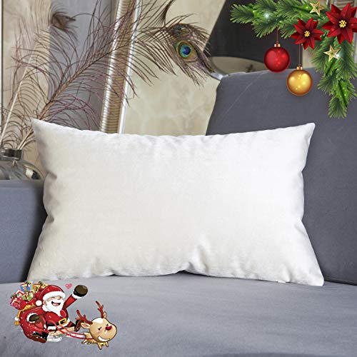 HOME BRILLIANT Spring Velvet Decorative Throw Pillow Cover Accent Lumbar Cushion Cover for Car/Toddler/ Neck Pain, 12x20 inch(30x50 cm), Pearl Ivory