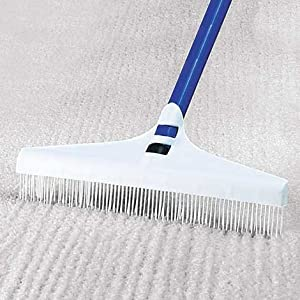 Great Carpet Rake