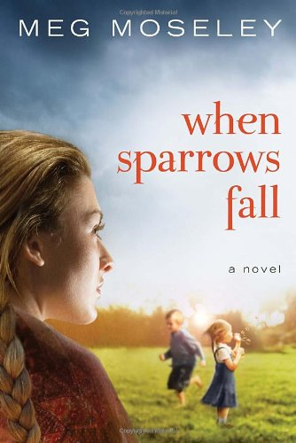When Sparrows Fall: A Novel PDF