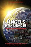 Angels Walk among Us, Rev. Joseph Oloimooja, 0578078503